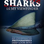 You can watch Sharks in my viewfinder online