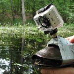 Wild Hungary: The Unpublished Turtle Cam Shot
