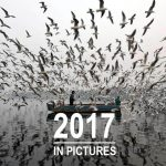 Selection of 2017's best photo collections